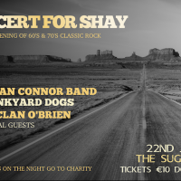 A Concert For Shay